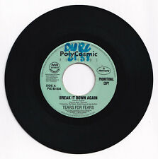 Philippines TEARS FOR FEARS Break It Down Again 45 rpm PROMO Record