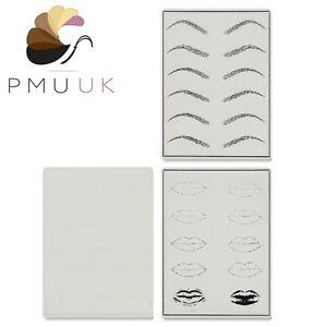 Permanent Makeup PRACTICE SKIN - SPMU - Microblading Training Skin Eyebrow Lip