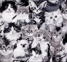 Cats Black & White chats Patchwork substances substances Patchwork Tiermotive Chaton