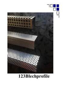 Winkel Lochblech Hinterlüftung Fassade Fassadenwinkel Lochblechwinkel