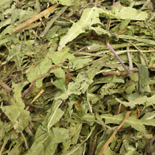 Dried whole Dandelion Leaf 500g, equine herb for horses, Tortoise Food, Rabbit