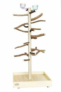 Natural Wood Parrot Stand Perch