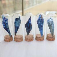 Natural Angel Aura Titanium Quartz Crystal Feather Cluster Landscape Bottle US