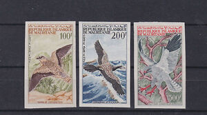 1964 Sc C29/31,imperf,set MNH birds       f1296