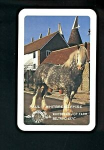 ONE LISTED SWAP PLAYING CARD SHIRE HORSE WHITBREAD HOP FARM KENT UK