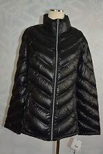 Calvin Klein   Hooded Puffer down coat  size M   NWT