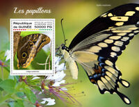 Guinea Butterflies Stamps 2020 MNH Forest Giant Owl Swallowtail Butterfly 1v S/S