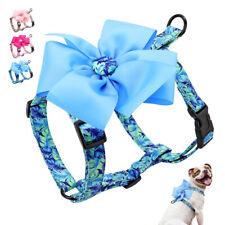 Nylon Flower Cat Walking Jacket Strap Dog Harness for Small Medium Large Dogs