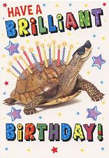 FUNNY TORTOISE WITH CANDLES ON HIS BACK BIRTHDAY CARD 1STP&P