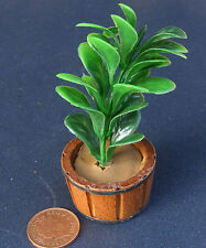 1:12 Scale Single Indoor Plant In A Wooden Pot Dolls House Garden Flower