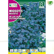 Miosotis Azul * No me olvides  (Myosotis alpestris) 0,2 gr / 300 semillas seeds
