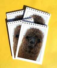 Alpaca Pack of 4 A6 Note Pads Gift Set Farm