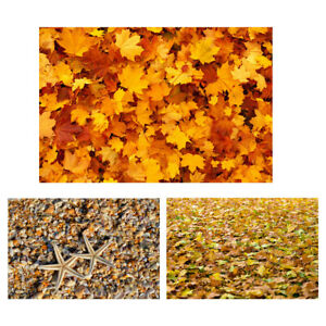 Autumn Maple Leaves Shell Photography Backdrop Cloth Background Studio Prop NEW