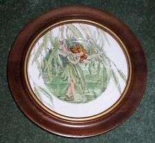 CICELY MARY BARKER Fairies of Fields/Flowers WILLOW Fairy Plate in Wooden Frame