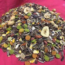 Fruity Treat 1 KG HEALTHY Pinapple Papaya Nut Sunflower Pea Small Animal Hamster