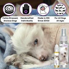 Chinese Crested Relax Dog Aromatherapy | Calm Anxious, Stressed Dogs Naturally