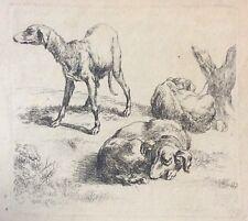 Trois chiens  Nicolaes Berchem 1620-1683 Amand Durand vers 1875 chien