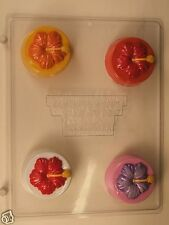 HIBISCUS COOKIE MOLD CLEAR PLASTIC CHOCOLATE CANDY MOLD AO247