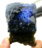 111.8g Large Particles Blue Cube Fluorite Crystal Mineral Specimen/China