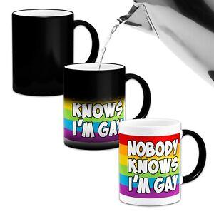 Nobody Knows I'm Gay Heat Colour Changing Mug