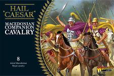 WARLORD GAMES NUOVO CON SCATOLA macedone Companion CAVALLERIA