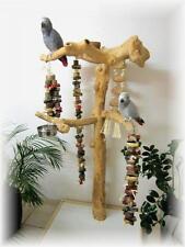 Freisitz, Papageienspielzeug, aus ORIGINAL Java Holz, Stamm aus Javaholz, 165 cm