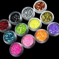 12 Color SHINY GLITTER POWDER DUST for Nail Art Acrylic Tips Decoration Set