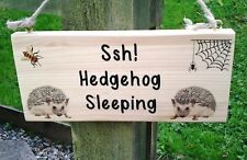Hedgehog Plaque Personalised with any Text Custom Made Sign