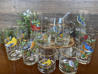 14PC Set West Virginia Glass Company Song Bird Pitcher Tumbler Old Fashion Glass