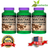 MAITAKE MUSHROOM 500MG EXTRACT ANTI AGING IMMUNE HEALTH HERB SUPPLEMENT 360 CAPS