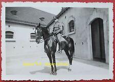 Foto Kavallerie Offizier Portrait auf Pferd, Wehrmacht Soldat Parade Uniform wk2