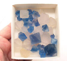 5621 Fluorite Octahedrons/Diamonds New Mexico/blau China/weiß >0,2 kg ca 46 St