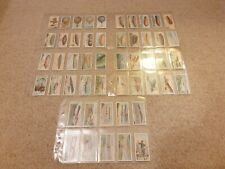 More details for wd & ho wills aviation 1910 cigarette cards full set of 50 aeroplane aircraft