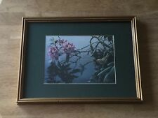 ROBERT BATEMAN GOLDEN-CROWNED KINGLET AND RHODODENDRON Framed Print