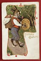Prägedruck Glückwunsch AK OSTERN 1905 Osterhase in Menschengestalt   ( 67280