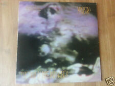 Ministry - The Land Of Rape And Honey - 1st U.S. Press PROMO Vinyl LP 1988 *NM*