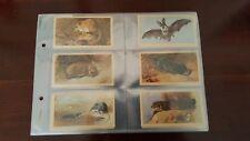 Doncella British Mammals Cigarette Cards Complete Set
