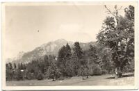 Idyllwild California RPPC Real Photo Vintage Postcard CA