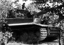 WW2 Photo WWII Michael Wittmann Tiger I Normandy 1944  World War Two / 2534