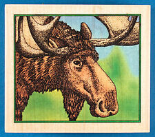 Friendly Moose Rubber Stamp by Embossing Arts - Animal Head Portrait Canada