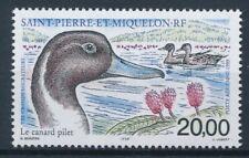 [326045] SPM 1999 Ducks good Airmail Stamp very fine MNH