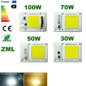 LED COB Chip 30W50W70W100W 220V 110V Input Integrated Smart IC Driver Floodlight