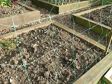 Plant Support Netting Climbing Mesh 2x100m Plastic Garden Vegetable Pea & Bean