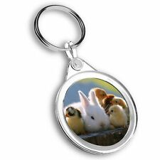 Keyring Circle - Baby Bunny Rabbit and Chicks  #44195