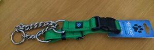 Martingale Dog Collar - Medium - Green