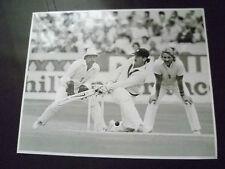 Cricket Press Photo- Allan Border sweeps ball in 1985 England v Aust. Test Match