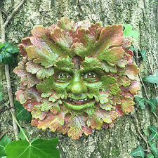 VECCHIO woodknot Greenman Garden targa sul muro Outdoor celtica pagane decorativo 09054