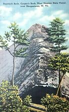 Vintage Postcard of Cooper Rocks State Forest (Morgantown, Wv), circa 1949