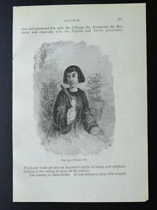China A CHINESE GIRL Original Victorian Print by Figuier c1893