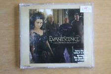 Evanescence  – Call Me When You're Sober    (C241)